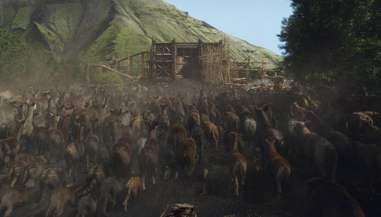 Noah - Bild 5
