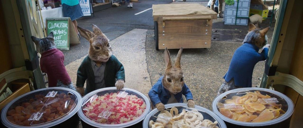 Peter Hase 2 - Ein Hase macht sich vom Acker - Bild 2