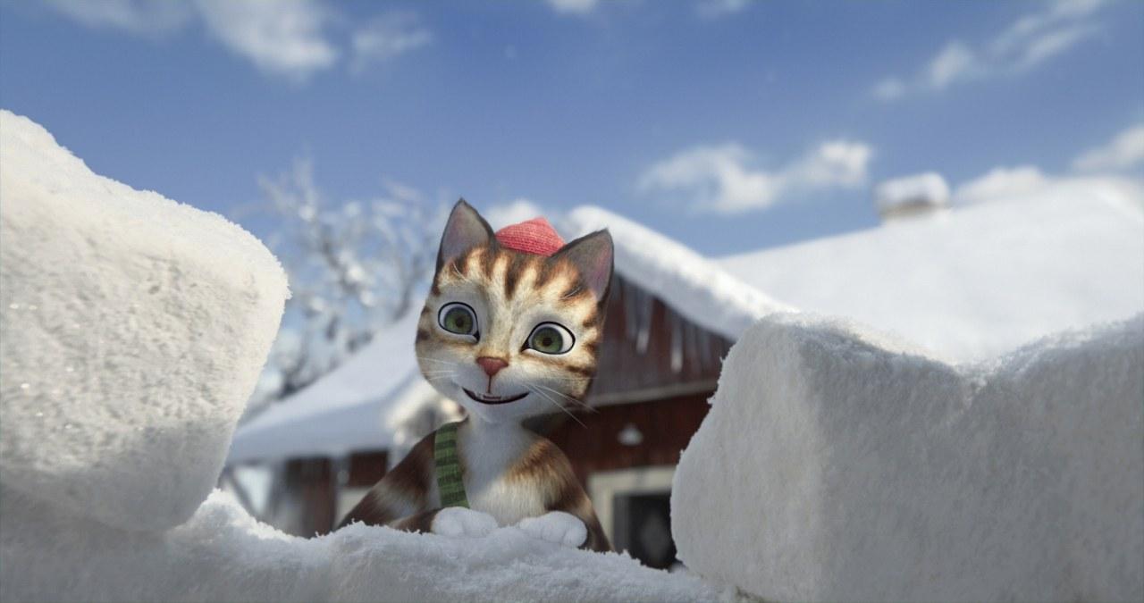 Pettersson und Findus: Das schönste Weihnachten überhaupt - Bild 5
