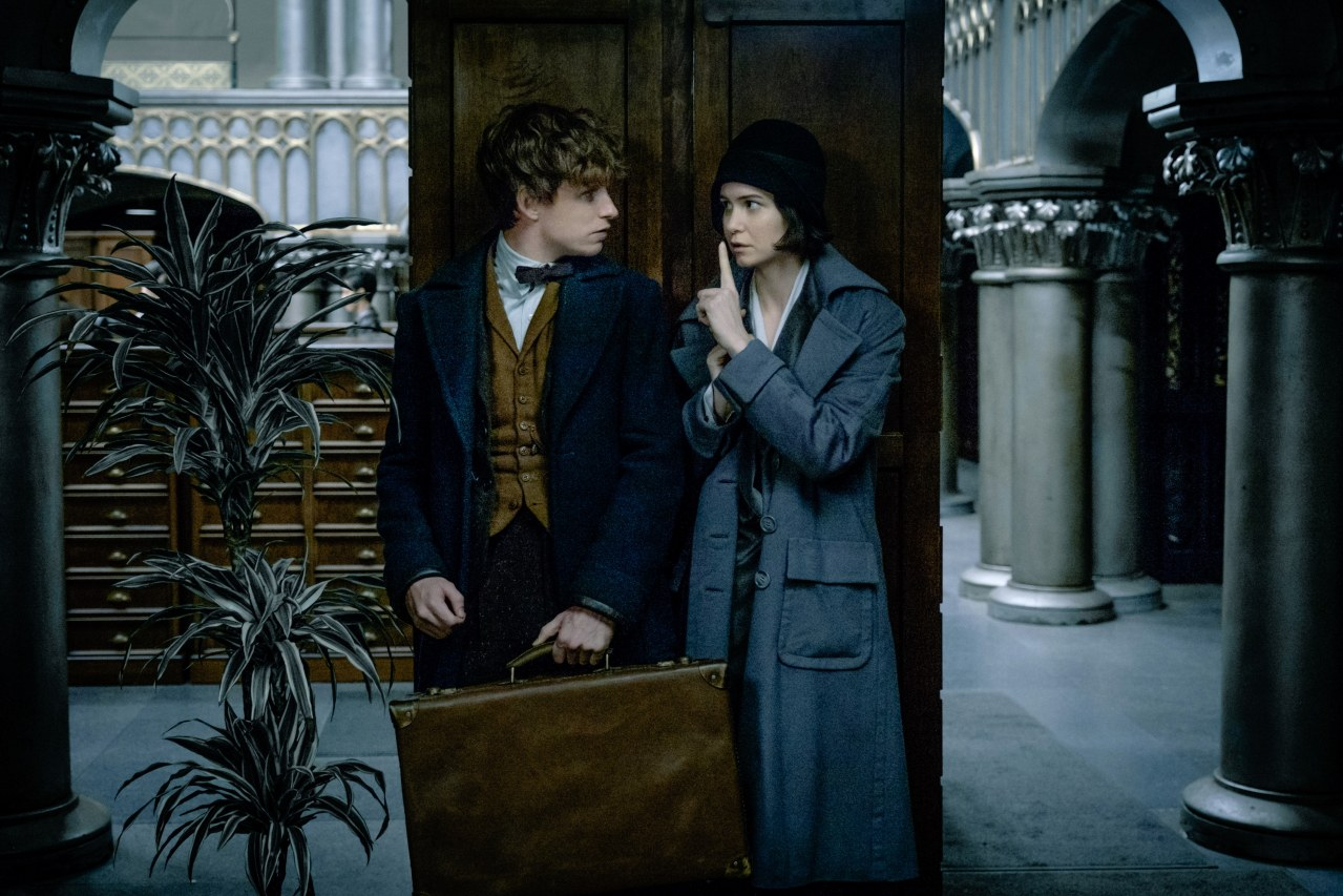 Fantastic Beasts and Where to Find Them - Bild 11