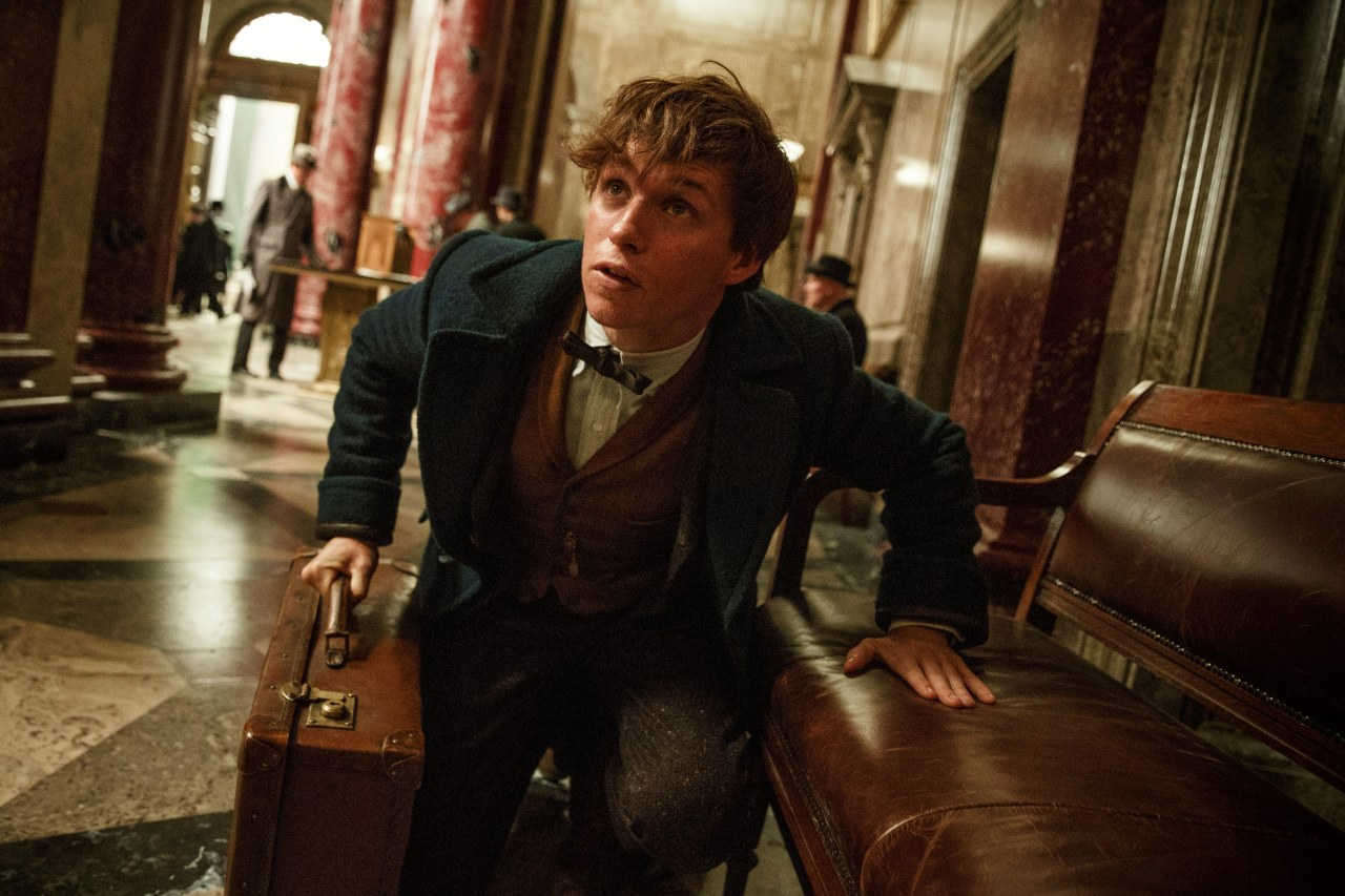 Fantastic Beasts and Where to Find Them - Bild 22