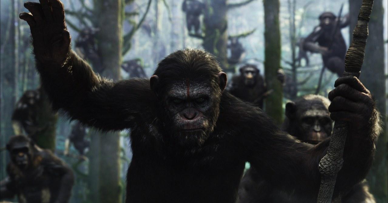 Planet der Affen - Revolution - Bild 2