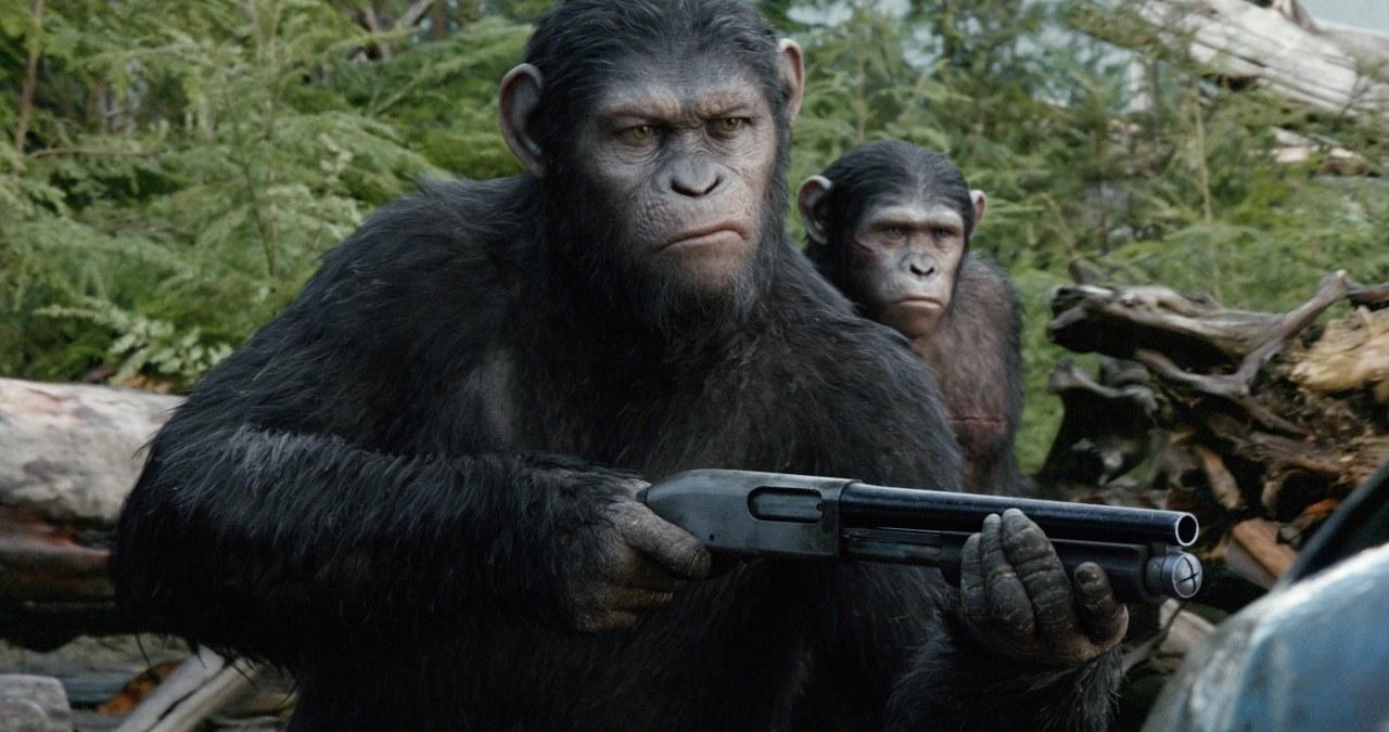 Planet der Affen - Revolution - Bild 3