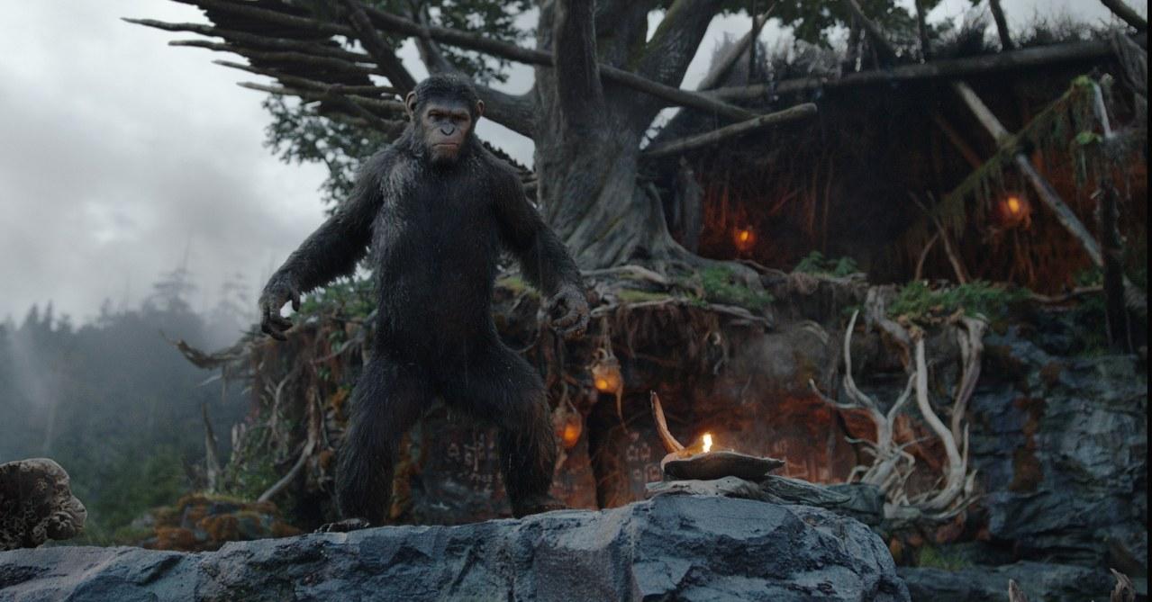 Planet der Affen - Revolution - Bild 4