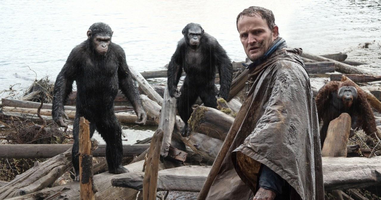 Planet der Affen - Revolution - Bild 7