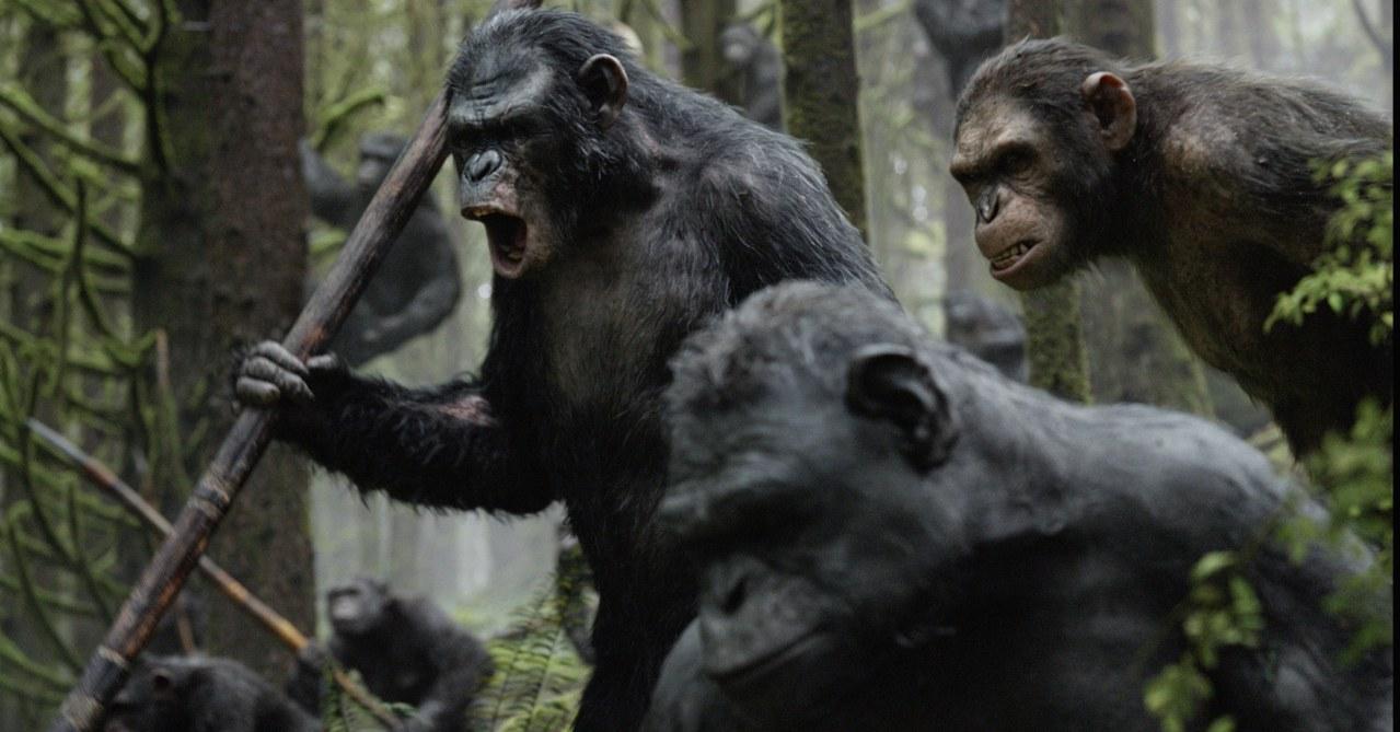 Planet der Affen - Revolution - Bild 8