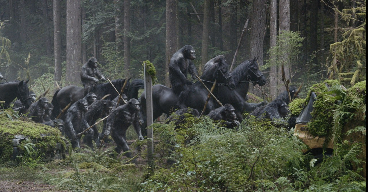 Planet der Affen - Revolution - Bild 10