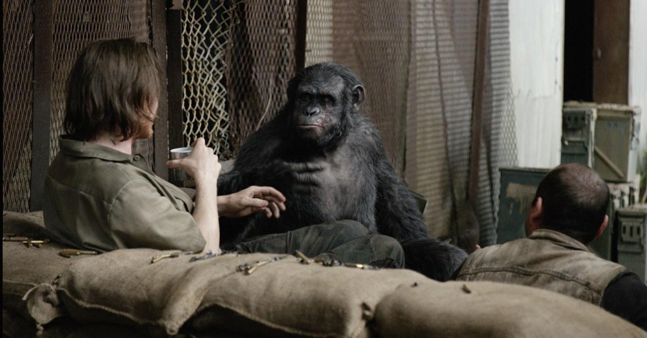 Planet der Affen - Revolution - Bild 11