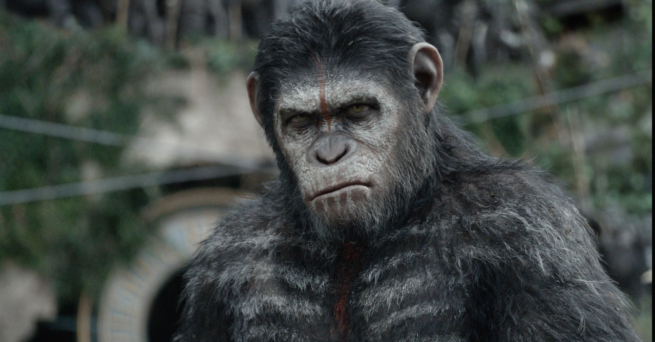 Planet der Affen - Revolution - Bild 12