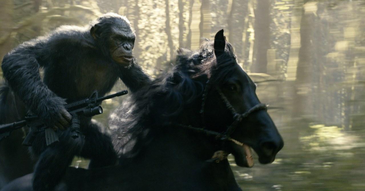 Planet der Affen - Revolution - Bild 14