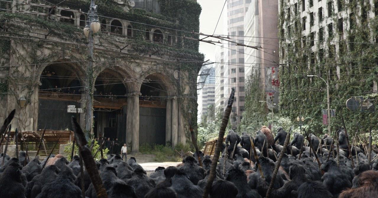 Planet der Affen - Revolution - Bild 15