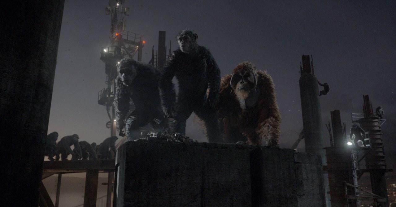 Planet der Affen - Revolution - Bild 18