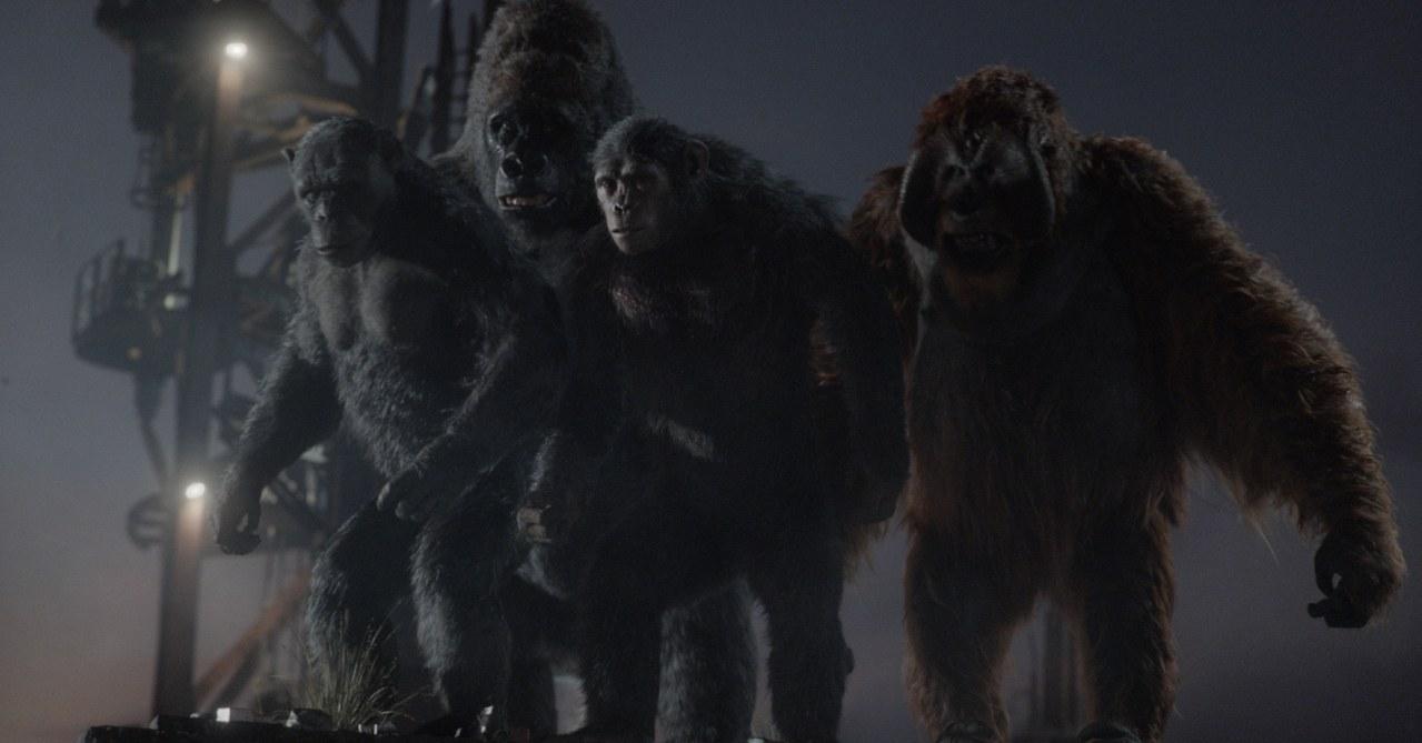 Planet der Affen - Revolution - Bild 19