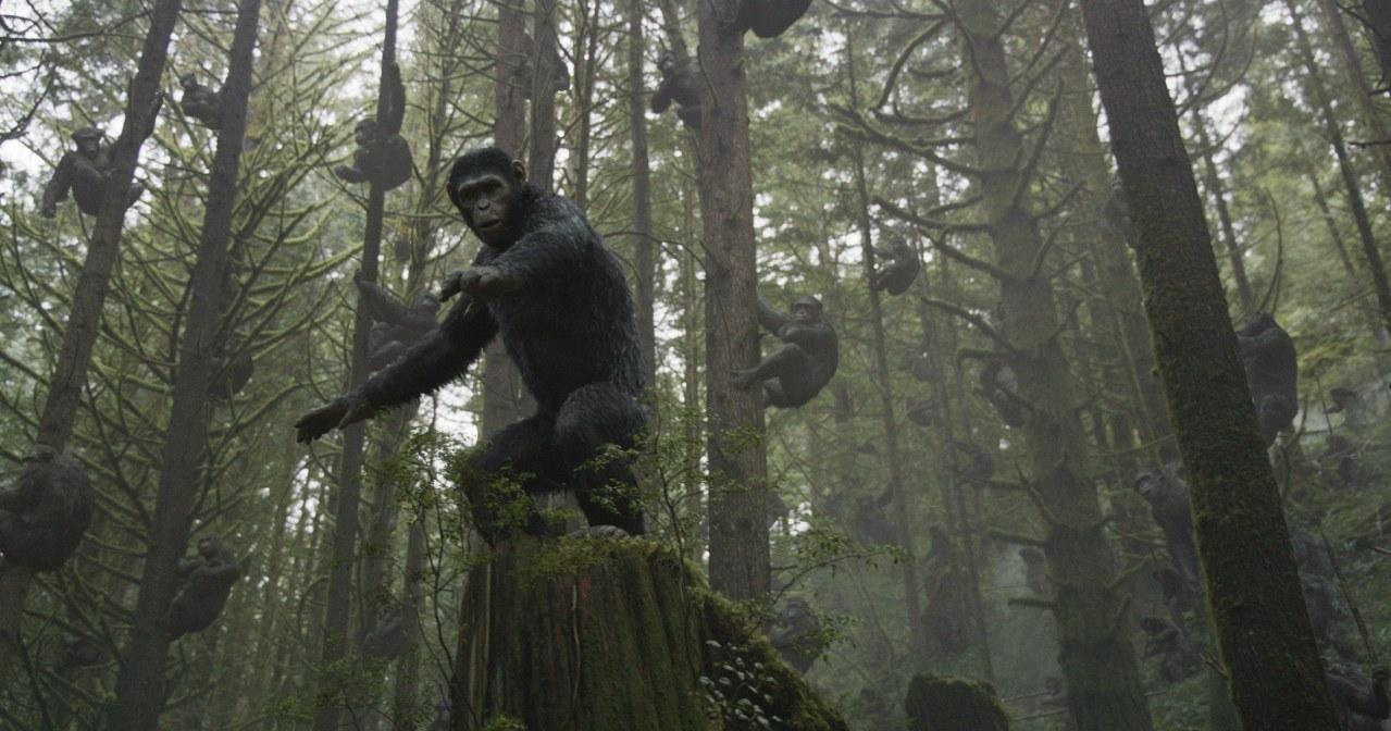 Planet der Affen - Revolution - Bild 26