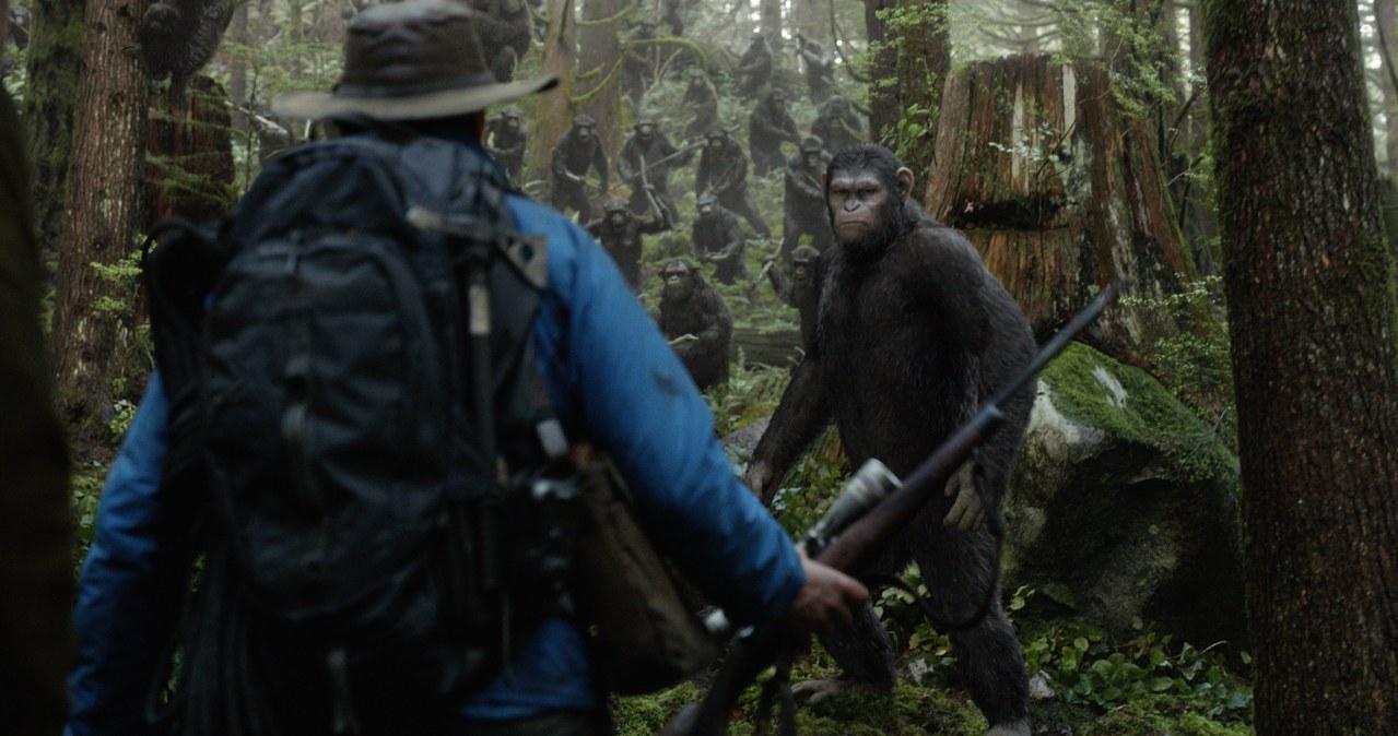 Planet der Affen - Revolution - Bild 27