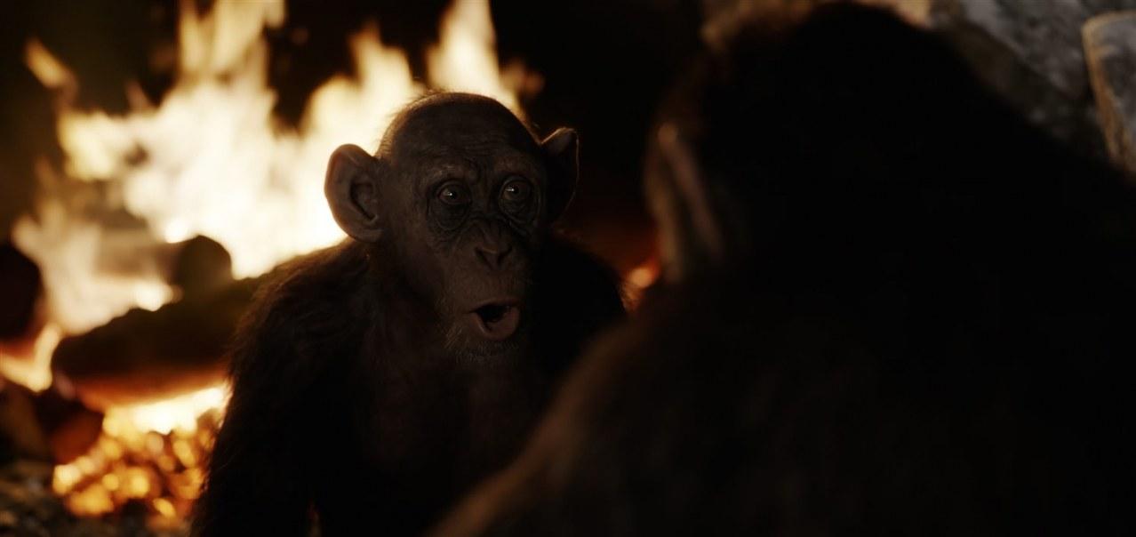Planet der Affen: Survival - Bild 1
