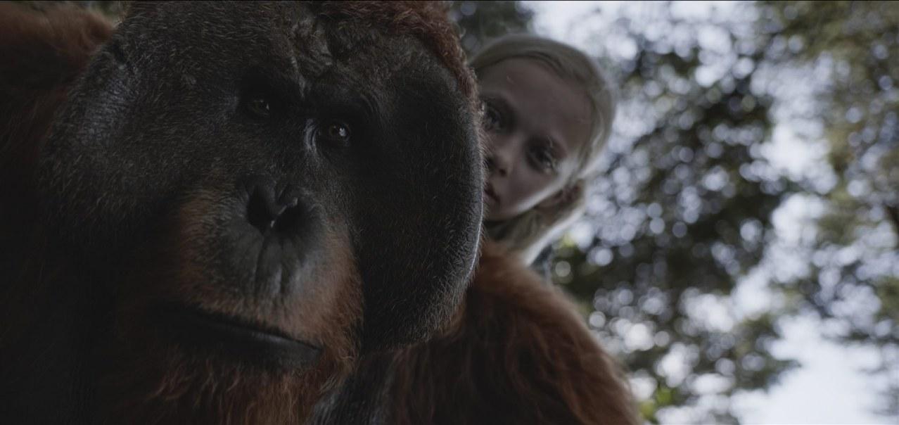 Planet der Affen: Survival - Bild 7