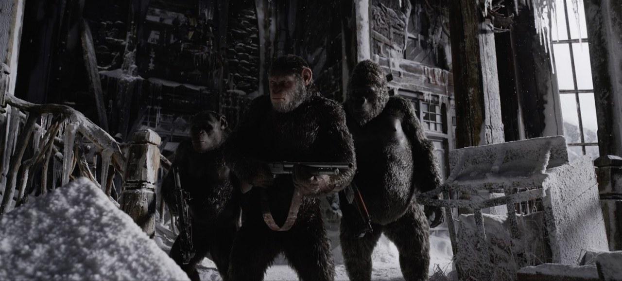 Planet der Affen: Survival - Bild 10