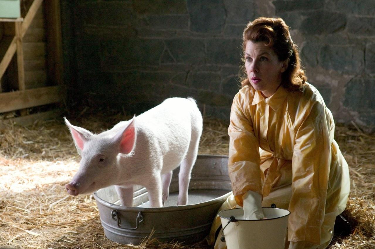 Schweinchen Wilbur und seine Freunde - Bild 9