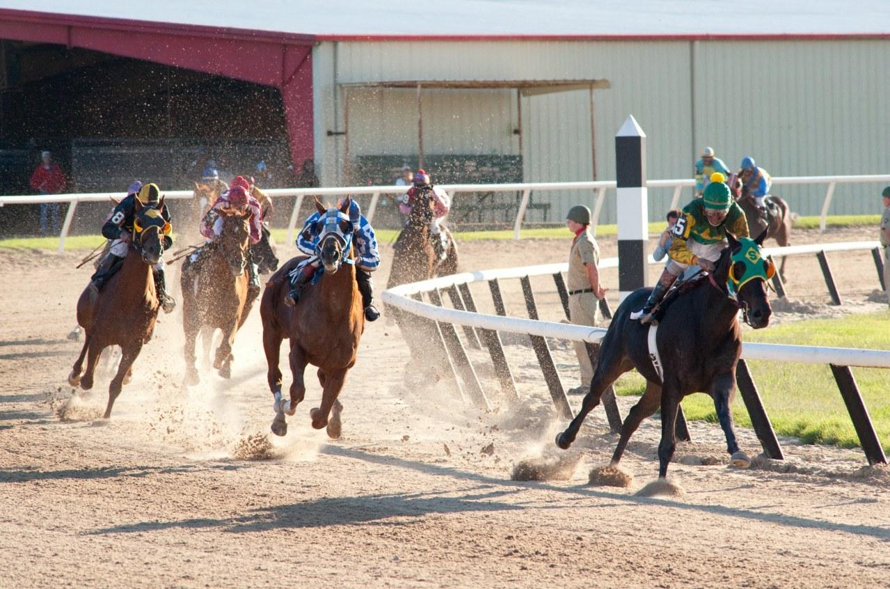 Secretariat - Ein Pferd wird zur Legende - Bild 16