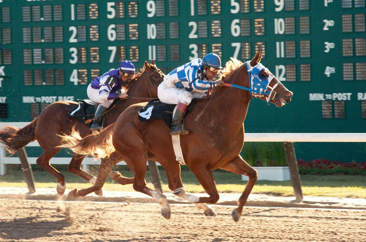 Secretariat - Ein Pferd wird zur Legende - Bild 24