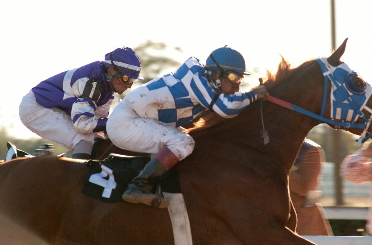 Secretariat - Ein Pferd wird zur Legende - Bild 25