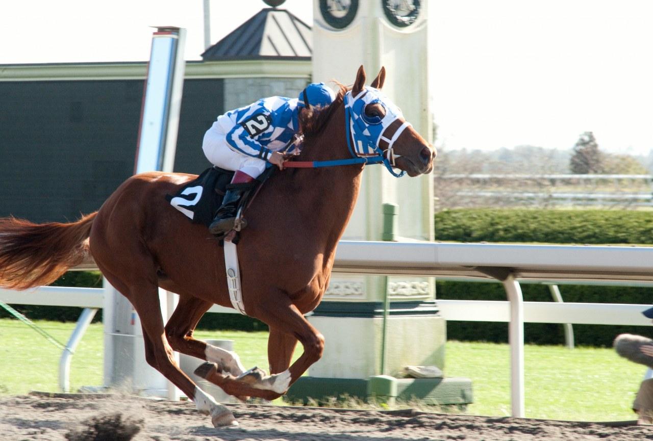 Secretariat - Ein Pferd wird zur Legende - Bild 28