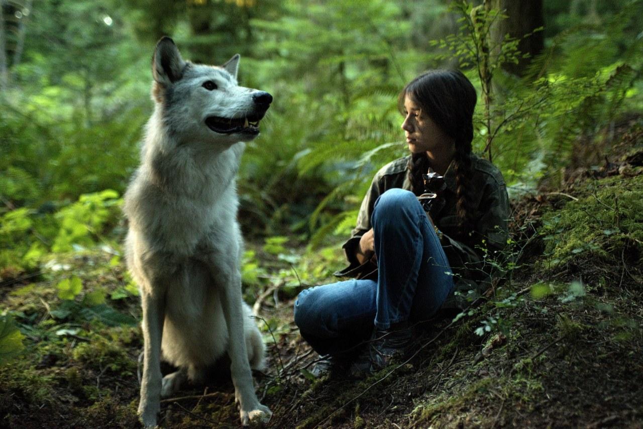 Shana - The Wolf's Music - Bild 5