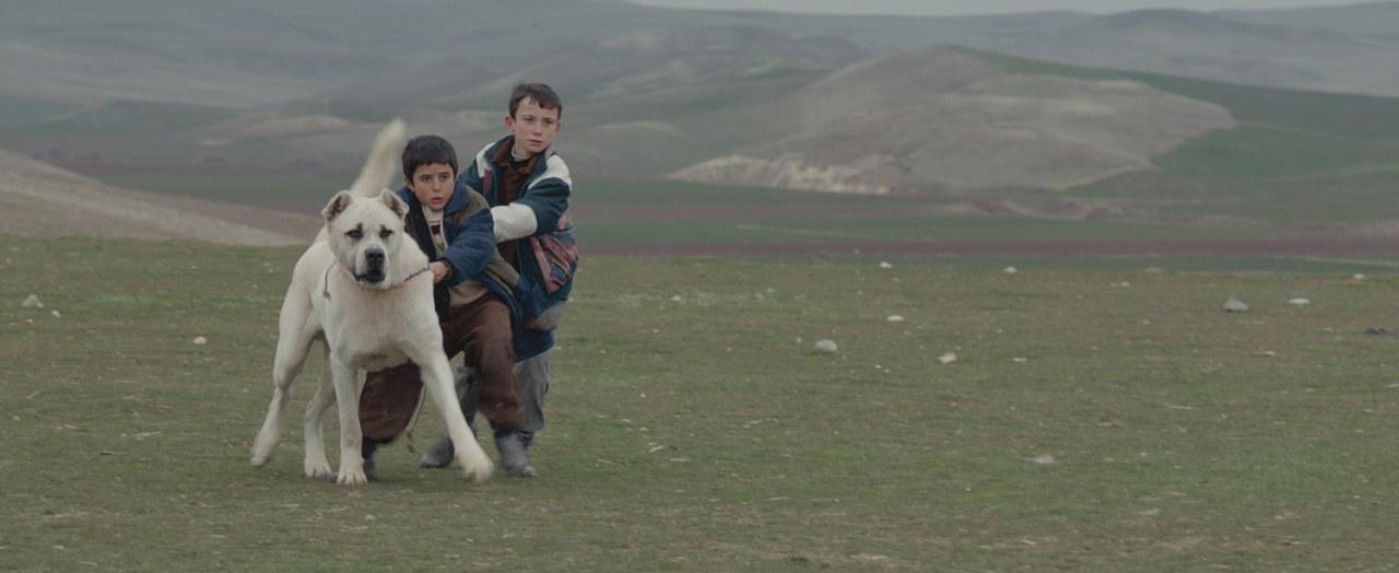 Sivas - Bild 5