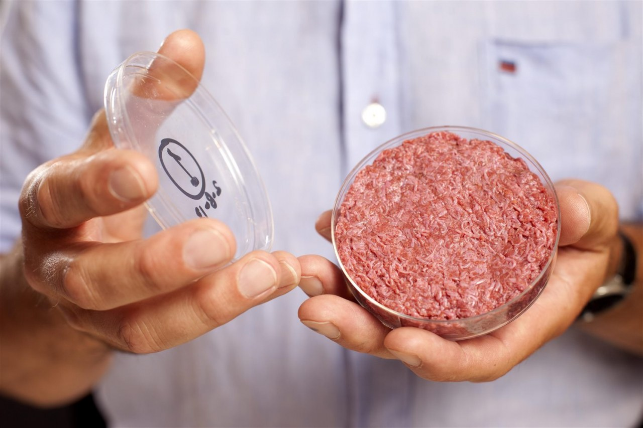 The End of Meat - Eine Welt ohne Fleisch - Bild 3