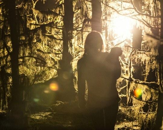 The Hallow - Bild 2