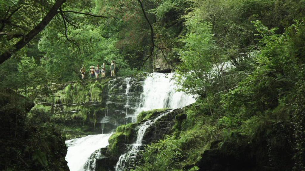 The Hike - Ausflug ins Grauen - Bild 3