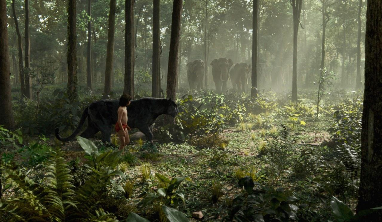 The Jungle Book - Bild 1