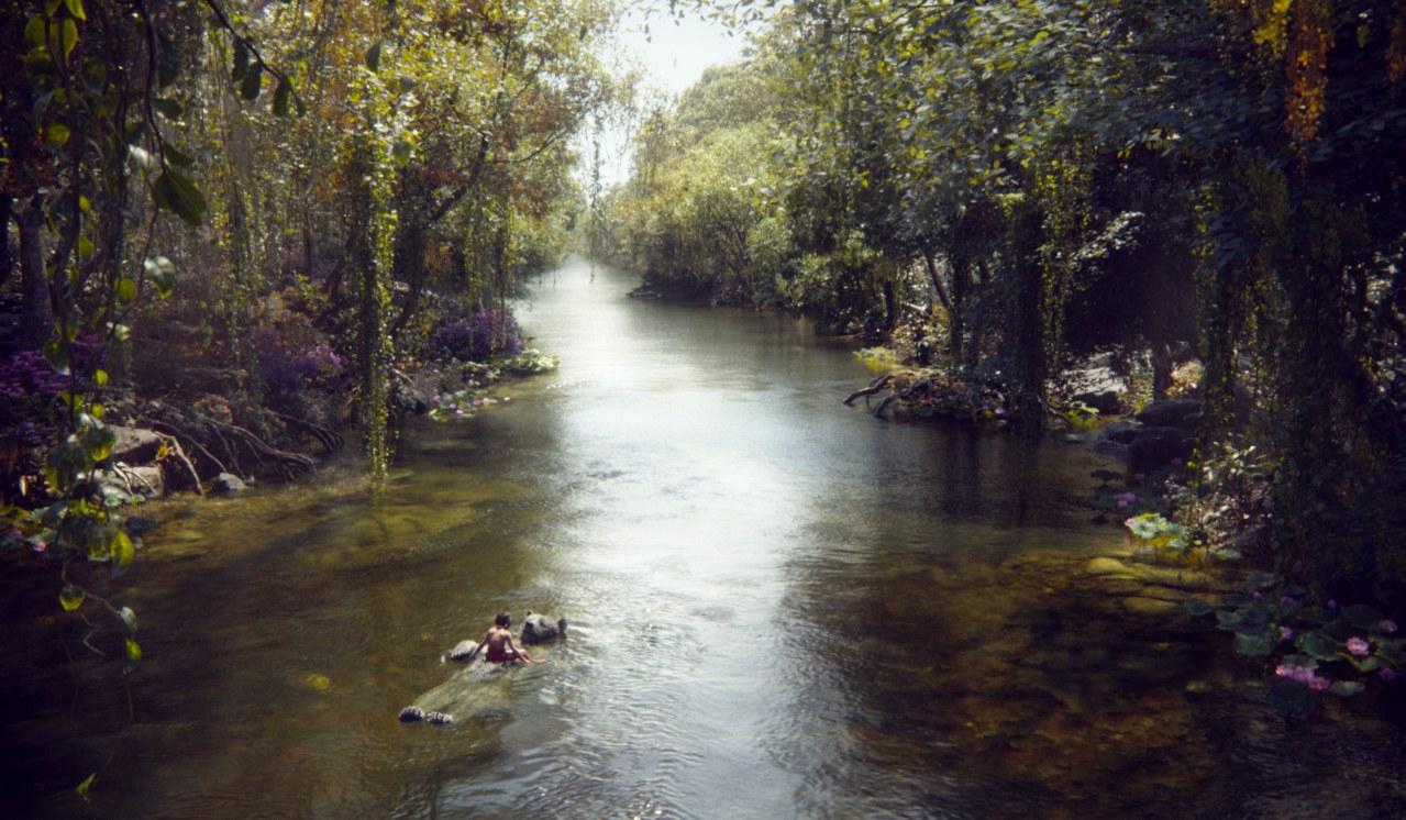 The Jungle Book - Bild 6