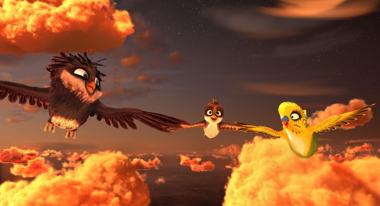 Überflieger: Kleine Vögel - großes Geklapper - Bild 13