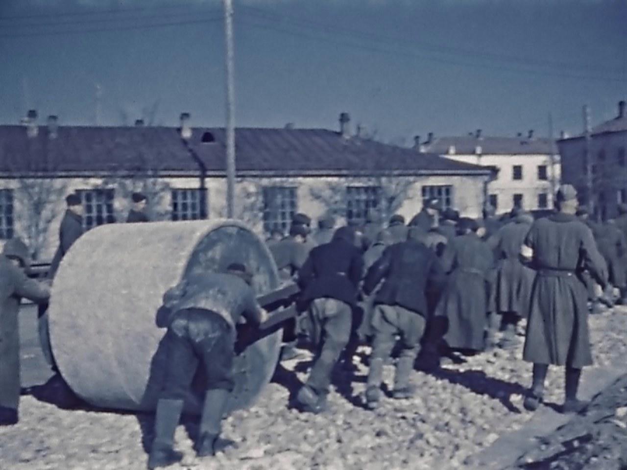 Wer war Hitler - Bild 8