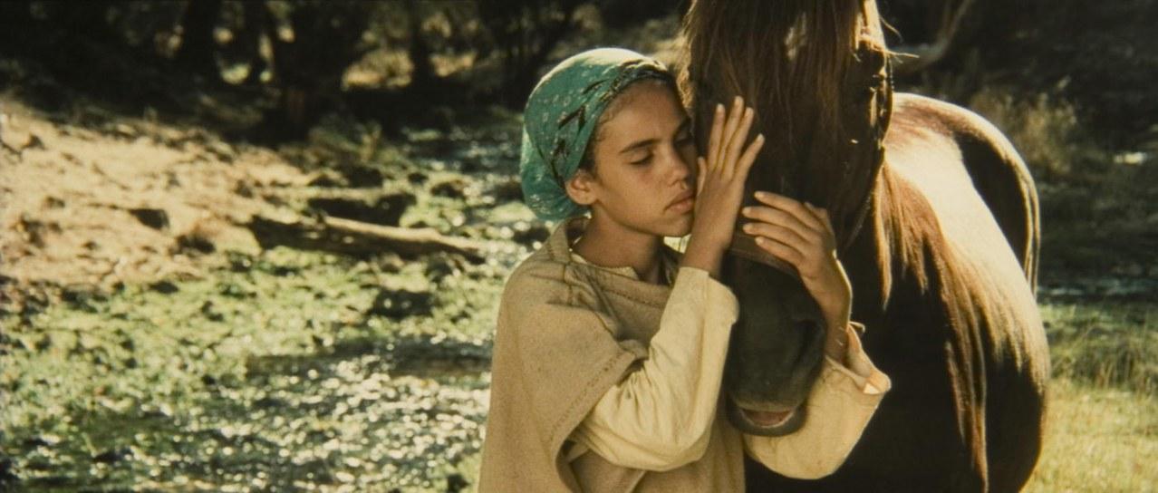 Zaïna, Königin der Pferde - Bild 5