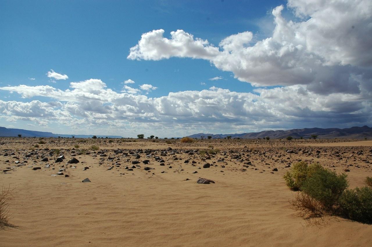 Allein die Wüste - Bild 4