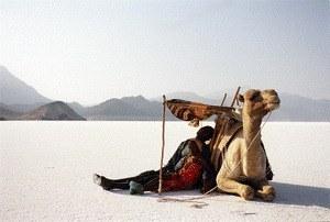Als der Wind den Sand berührte - Bild 1