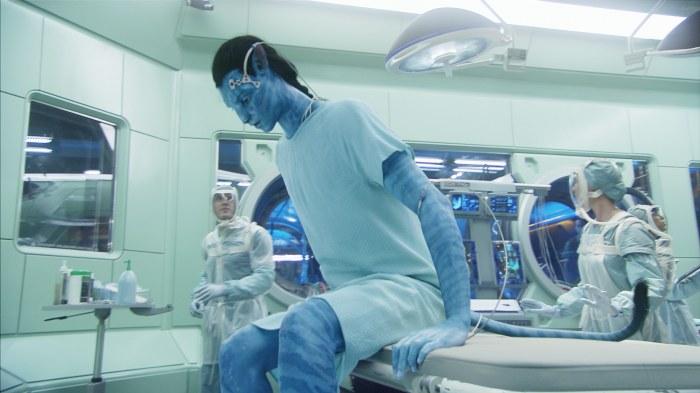 Avatar - Aufbruch nach Pandora 3D - Bild 14