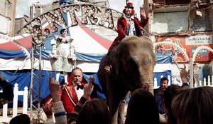 Mad Circus - Eine Ballade von Liebe und Tod - Bild 2