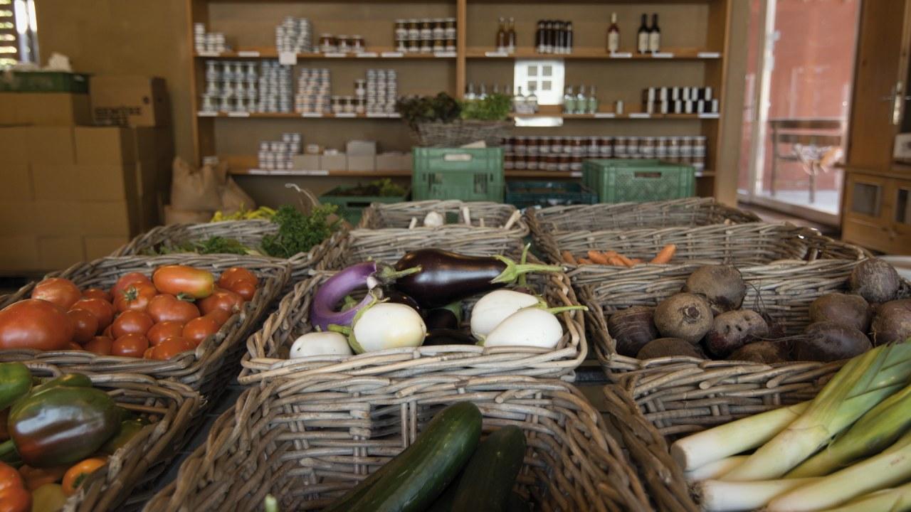 Bauer unser: Billige Nahrung - teuer erkauft - Bild 2