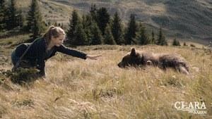 Clara und das Geheimnis der Bären - Bild 2