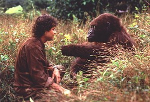 Congo - Bild 2