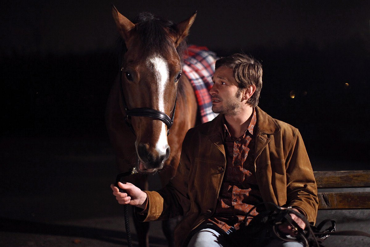 Das Pferd auf dem Balkon - Bild 7