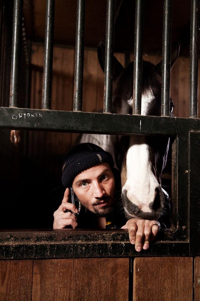 Das Pferd auf dem Balkon - Bild 20