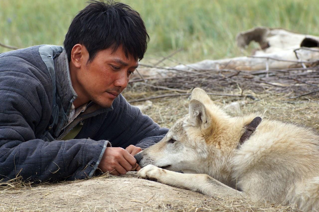 Der letzte Wolf - Bild 1