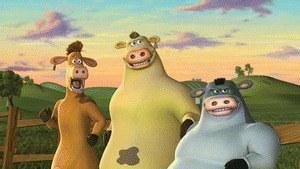 Der tierisch verrückte Bauernhof - Bild 1