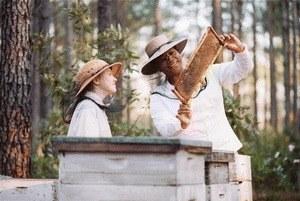 Die Bienenhüterin - Bild 2