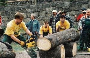 Die Könige der Nutzholzgewinnung - Bild 1